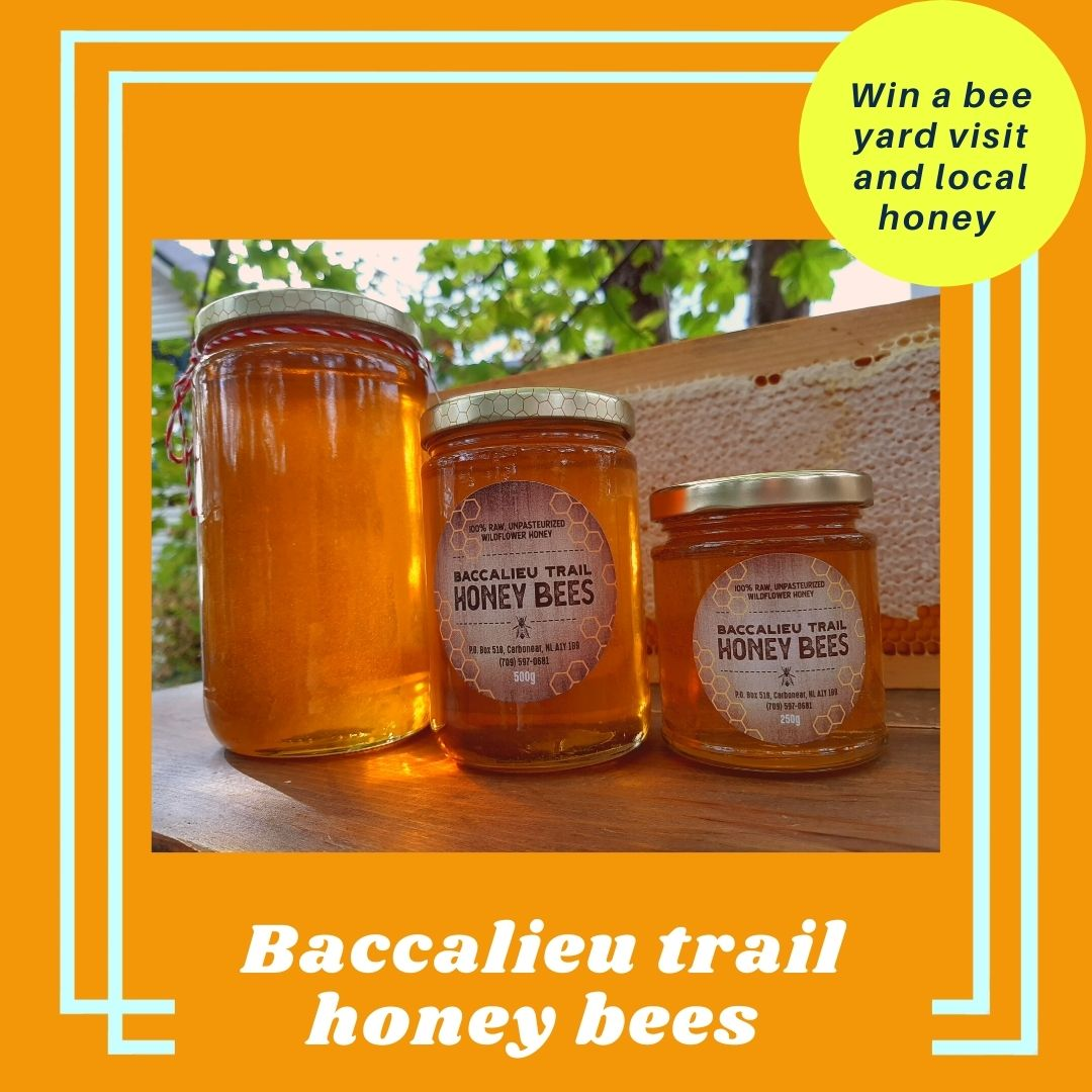 Baccalieu Trail Honey and Bees