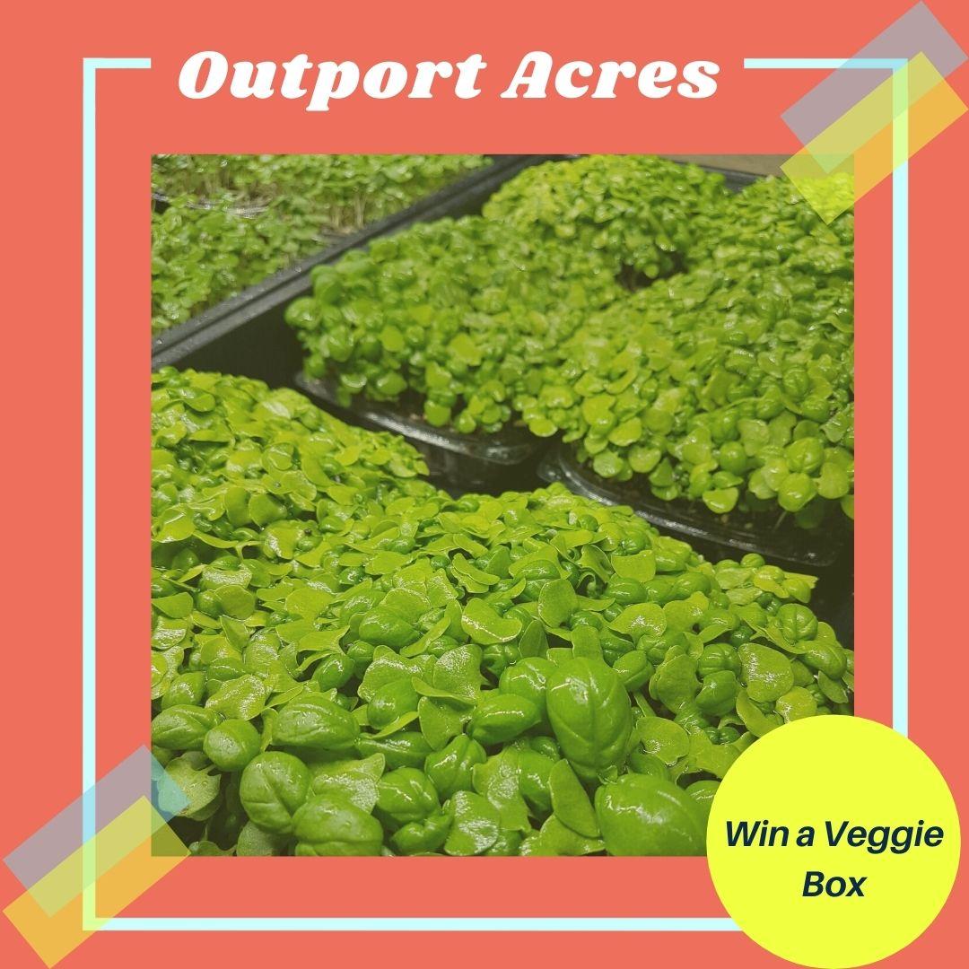 Output Acres